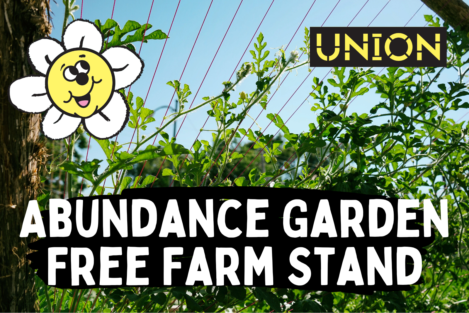 Abundance Garden Free Farm Stand text against a photo of a vine clibing a trellice A smiling cartoon flower is in the top right corner