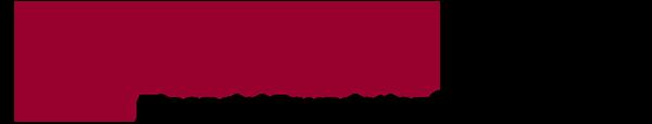 Lincoln financial logo 2